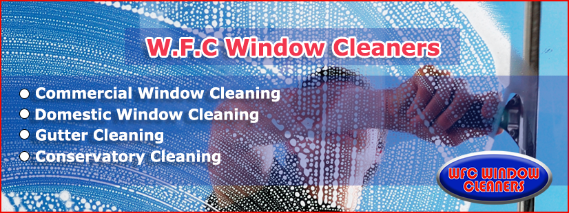 Domestic Window Cleaning Services